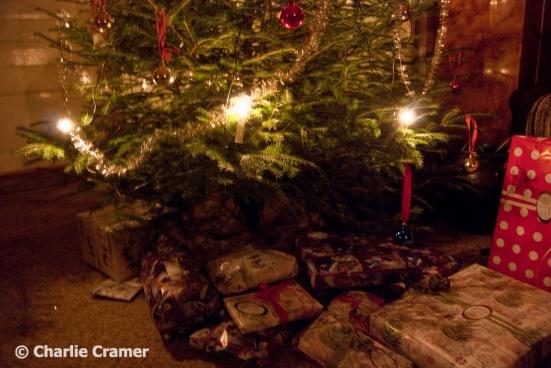 Julgran i Habo julen 2015 foto Charlie Cramer